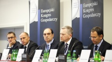 European Economic Congress 2012 - Investment in the Polish energy generation industry. Is it a breakthrough at last?